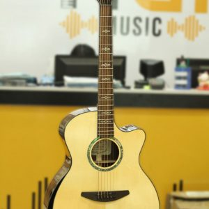 Đàn Guitar Acoustic Everest E500AC 1