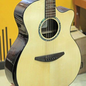 Đàn Guitar Acoustic Everest E500AC 2
