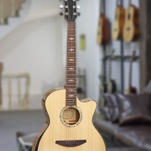 Đàn Guitar Acoustic Everest E100LMT 1