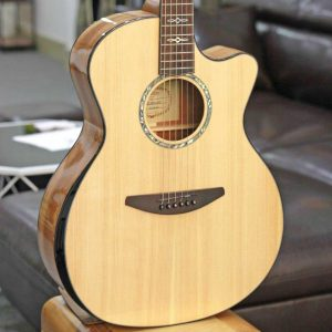 Đàn Guitar Acoustic Everest E100LMT 2