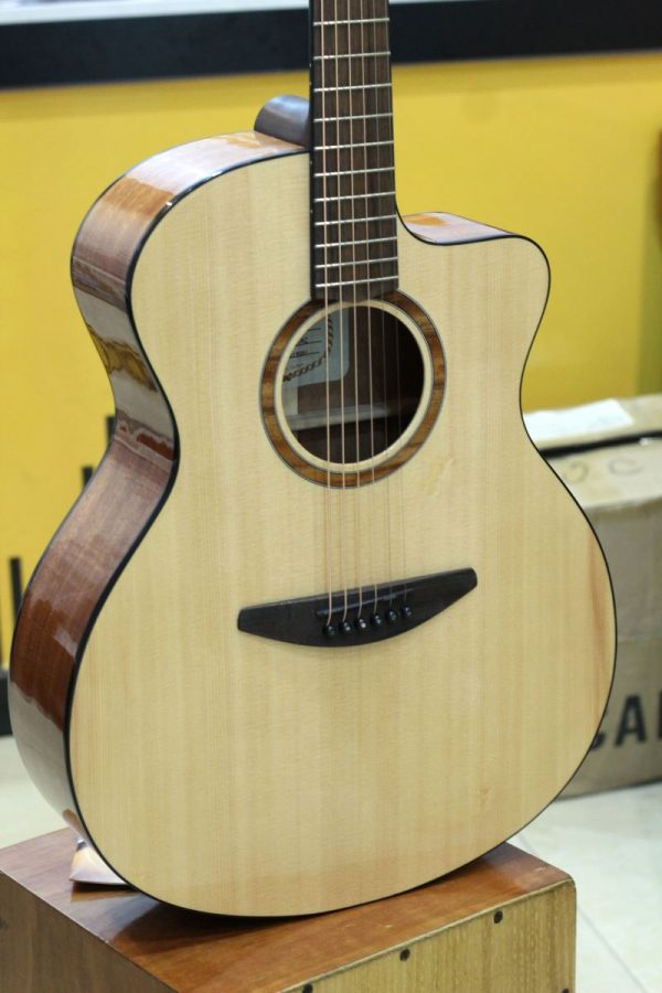 Đàn Guitar Acoustic Everest E100AC 2