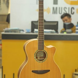 Đàn Guitar Acoustic Everest E50HDM 1