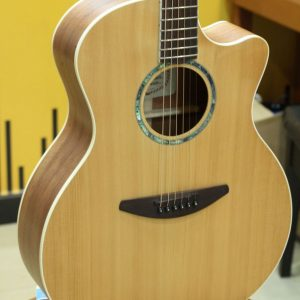 Đàn Guitar Acoustic Everest E50HDM 2
